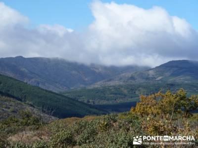 Actividad desde zona norte Madrid, Parque Natural del Hayedo de Tejera Negra; rutas madrid sierra